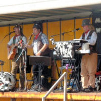 The Mangledwurzels on stage at the Animal Farm Adventure Farm in Berrow (27 Aug 2007)